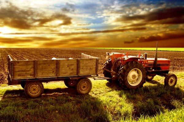 Φορολογία Αγροτών
